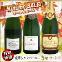 楽天ウメムラ Wine Cellar【オータムセール】豪華シャンパーニュ 3本セット 2