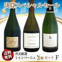 楽天ウメムラ Wine Cellar【決算セール】送料無料 社長厳選 シャンパーニュ 3本セット F
