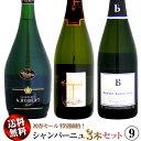 楽天ウメムラ Wine Cellar【送料無料】初春セール シャンパーニュ 3本セット 09