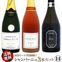 楽天ウメムラ Wine Cellar【送料無料】初春セール シャンパーニュ 3本セット 14