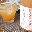 御湖鶴 完熟 紅玉りんご酒 720ml【菱友醸造/長野県】