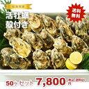 ★松島湾産 活牡蠣殻付き 50ヶセット(加熱調理用)送料無料!★
