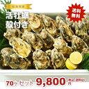 ★松島湾産 活牡蠣殻付き 70ヶセット(加熱調理用)送料無料!★