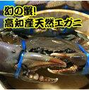 ショッピング場所 直送!高知産天然エガニ(ノコギリガザミ)約500〜600g