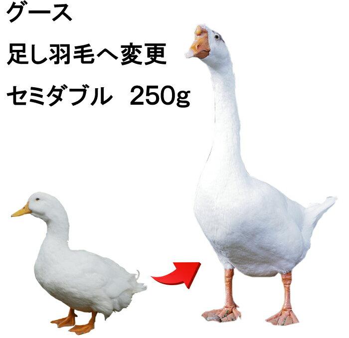 【エントリーでポイント5倍】リフォーム追加羽毛ポーランド産ホワイトグースセミダブル用 グレードアップ 250g