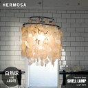 HERMOSA/ハモサ SHELL LAMP シェルランプ LCPL-0007 ランプ 天井照明 天然貝