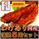 【訳あり】国内産うなぎ蒲焼5尾セット訳ありだけど、味は同じ!...