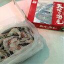 【刺身用】と〜っても甘い♪ 天使の海老 30〜40尾入 たっぷり1kg! 刺身はもちろん エビフライ 天ぷら エビチリにも!