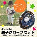 親子グローブセット KW-310 送料無料 キャッチボール ...