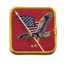輸入ワッペン〔551-America-eagle〕【DM便選択可】【アイロン接着】【楽ギフ_包装】