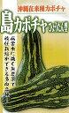 フタバ種苗 沖縄 島かぼちゃ(ひょうたん型) 種・小袋詰(5ml)