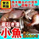 何が入るか分からない底引き漁の小魚魚えーっセット(ぎょえーっセット)【RCP】