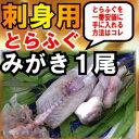 【旬の逸品SALE】送料無料!白子入りイキ〆とらふぐみがき発送