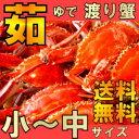 浜茹でワタリガニ小-中サイズ約1、1kg(4-5尾)送料無料