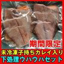 【期間限定】煮つけが旨い子持ちカレイ入り下処理鮮魚セット