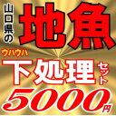 魚かつの下処理鮮魚セット5000円分