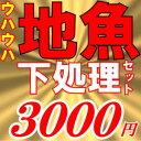 1月中旬発送分魚かつの下処理鮮魚セット3000円分