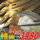 楽天山口県産海鮮広場 魚かつ7月が旬の魚 鱧冷凍はも鍋3-4人前、約400gお中元 送料無料夏セール2018