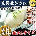 殻から身を取り出し急速冷凍。身がぽってりとしクリーミーで甘味も濃厚です!