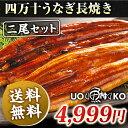 【2,000円以上で使えるクーポン配布中】よく脂がのって肉厚の鰻です。ギフトにも安心してお使い頂けます。 お口の中でとろけるような旨みと上品なあじわいをお楽しみください。