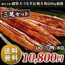 高知県四万十産うなぎ超特大サイズ蒲焼き長焼き3尾(1尾約200g) さらにきもすい3パック付き! と