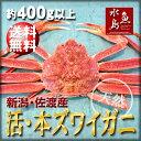 【送料無料】活ズワイガニ姿 新潟・佐渡産「活 本ズワイガニ」季節限定(生 本ずわい蟹)400g以上