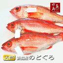 【送料無料】のどぐろ 新潟・日本海産 ノドグロ 1000g以上・3尾(生冷凍)