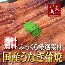 【送料無料】国産 鰻うなぎ蒲焼き ふっくら厳選素材 約30c...