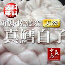 【送料無料】新潟・佐渡産 真鱈白子「季節限定」1kg