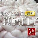 新潟・佐渡産 真鱈白子「季節限定」500g