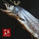 【送料無料】超厳選「塩引鮭」8kg物 冬季限定