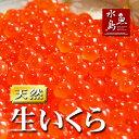 北海道〜岩手県産 生いくら 季節限定「とろりやわらか 生イクラ」 500g