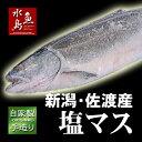 厳選自家製 塩マス(サクラマス 本鱒)1.5kg物