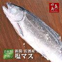 厳選自家製 塩マス(サクラマス 本鱒)1.5~1.9kg