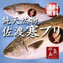 【送料無料】天然 寒ブリ「佐渡 寒ぶり」3kg以上4kg未満...