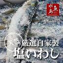 厳選自家製 塩イワシ 特大13尾 約2kg【超限定販売】