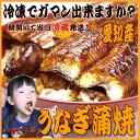 【送料無料】愛知産 鰻かば焼き 大3尾 朝開いた鰻を