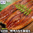 バーベキュー にも!【期間限定1480円!】【 最安挑戦!限...