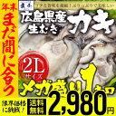 【2個買いで500円OFFクーポン!】【 年内着!年内最後の限界価格 】かき カキ 牡蠣
