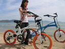 PANGAEA LOCO DRIVE 20 / ロコ ドライブ 20 クルーザー FDB206 Wsus  Wサスペンション付き 20インチ 折りたたみ自転車 北海道は別途送料(税込2500円)かかります。  【代引き不可】【離島発送不可】