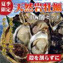 【送料無料】天然岩牡蠣(割らずにお届け) 10個セット