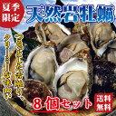 【送料無料】天然岩牡蠣(殻を割ってお届け)8個 セット 「父の日」