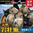【夏季限定】日本海産・天然岩牡蠣(割ってお届け)532P15May16