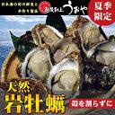 【夏季限定】日本海産・天然岩牡蠣(殻を割らずにお届け)