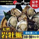 夏季限定【日本海産】天然岩牡蠣《割ってお届け》10個セット