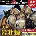 【日本海産】天然岩牡蠣10個セット《殻を割らずにお届け》