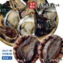 天然貝セットA【岩牡蠣4個〈殻を割って〉、あわび1個】