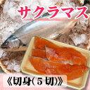 日本海の春の美味・サクラマス(本鱒・桜鱒)切身(5切)