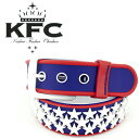 KFC ラバーベルト スノーボード用ベルト ベルト Kicker Fucker Chicken キッ