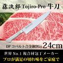 包丁 牛刀 藤次郎 Tojiro-Pro 刃渡り24cm 日本製 ナイフ プロ用 業務用の切れ味 包丁 藤次郎 Made in Japan